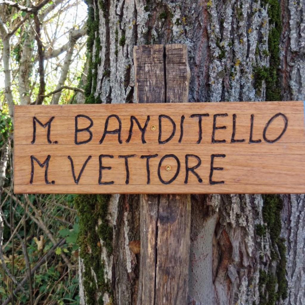 BANDITELLO 01 11 2015 009