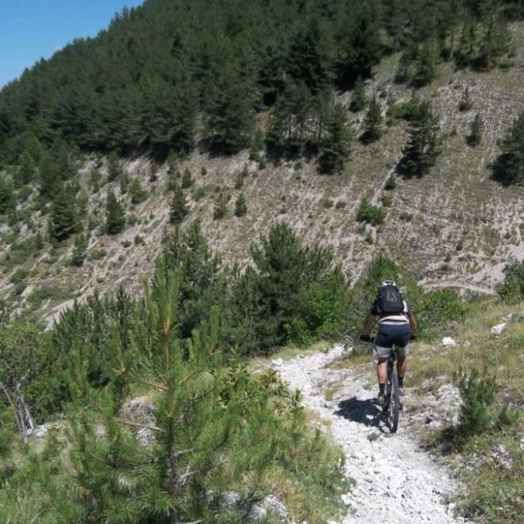 sentiero 279