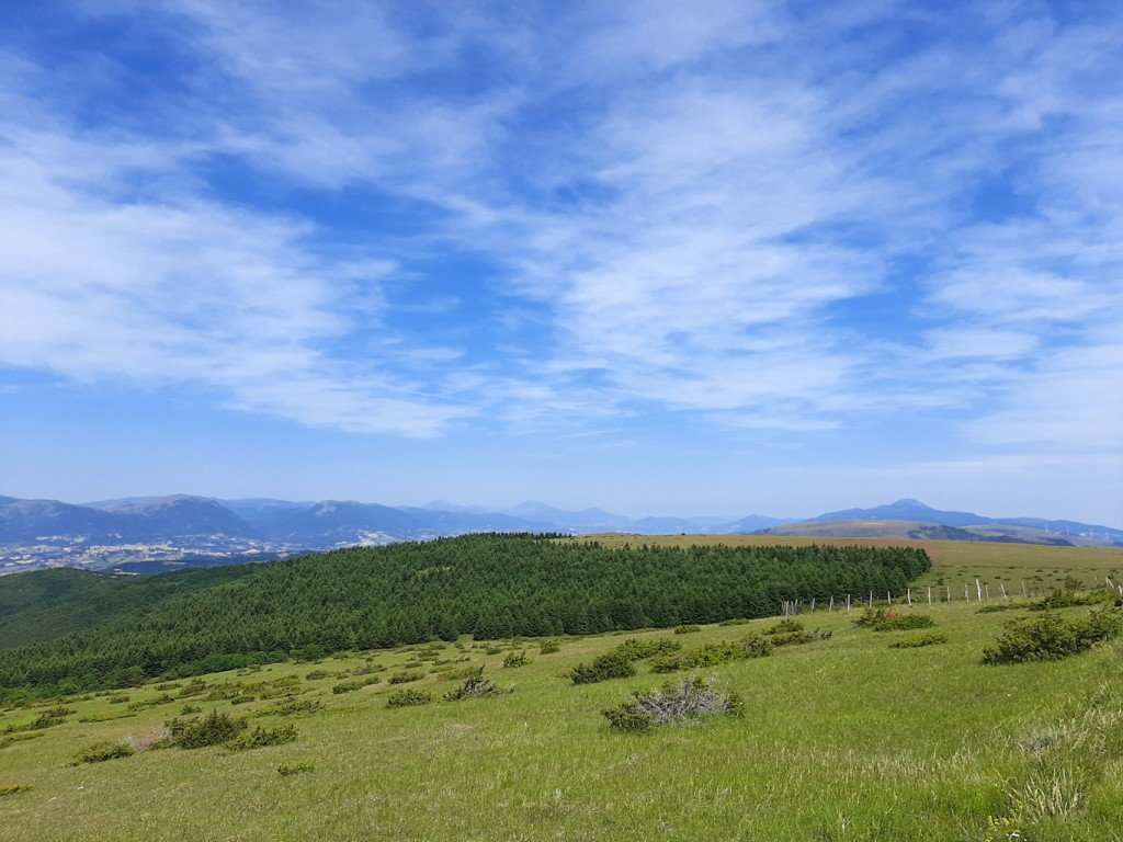 sentiero carbonaie 13 06 2021 (31)