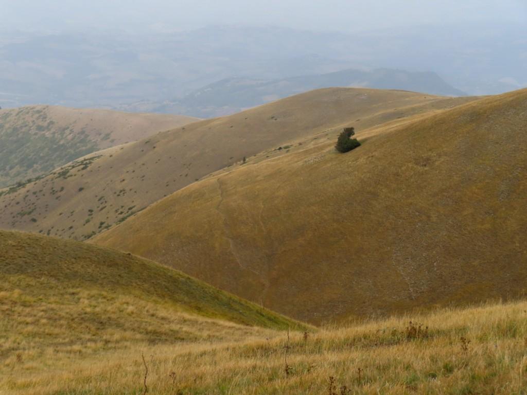 antica via dei pastori - sibillini (90)